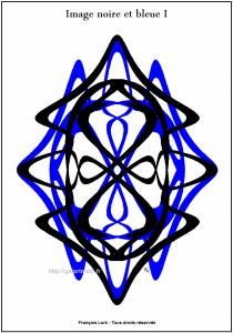 Image noire et bleue I - Black and blue curves - FLK - 2015